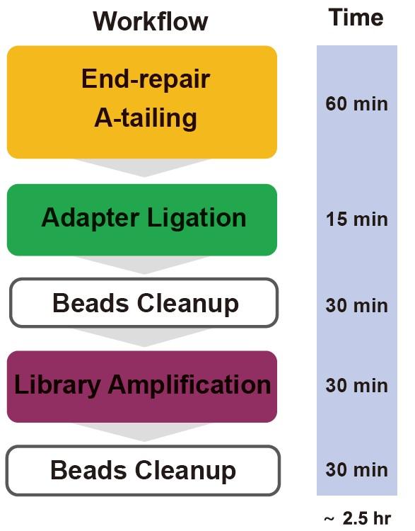 TIANSeq Fast DNA Library Kit (illumina)