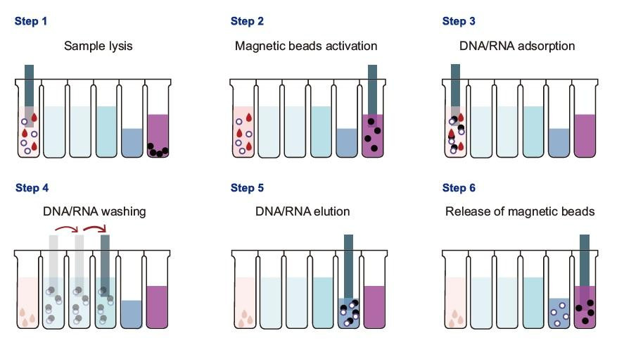 TGuide S32 Automated Nucleic Acid Extractor